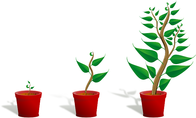 Image by OpenClipart Vectors for Pixabay.com