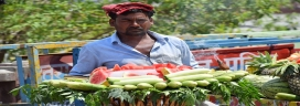 Ease of Doing Business Should Also be Applicable for Street Vendors